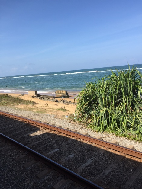 Picture from the train on our way to Galle.