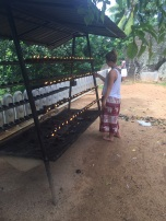Lighting a candle to celebrate Poya (full moon) at the ancient rock temple.