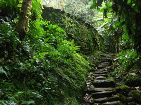 A picture of the trail to the lost city. *not my picture